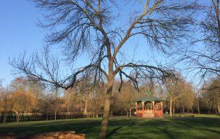 Queens Park, Kensal Rise