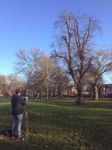Queens Park, painter, kensal rise, london